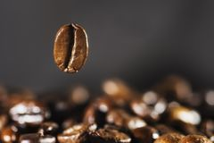 Flying coffee bean over dark. Blured background stock photo
