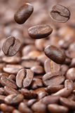 Flying coffee beans Royalty Free Stock Photos