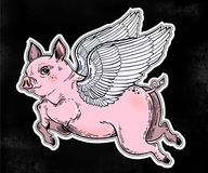 Flying colorful winged pig illustration. Flying winged pig. Colorful vibrant tattoo artwork of a piglet, linear fantastic animal. Isolated vector illustration Royalty Free Stock Photo