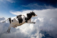 Flying Cow. A super cow flying over clouds stock photos