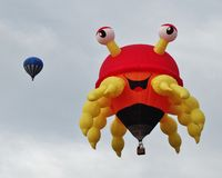 Flying crab Stock Photography