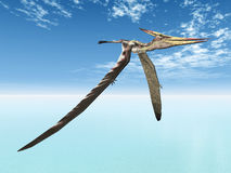 Flying Dinosaur Pteranodon. Computer generated 3D illustration of the flying Dinosaur Pteranodon Stock Images