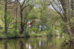 Flying dinosaur on the river Kamienna in Baltow, Poland Stock Photography