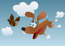 Flying dog and bird Stock Photo