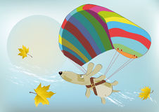 Flying dog with the parachute Royalty Free Stock Image