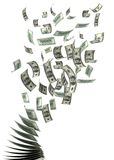 Flying Dollars. (isolated with clipping path royalty free illustration