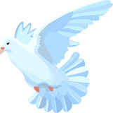 Flying dove Stock Image