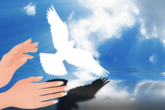 Flying dove Royalty Free Stock Images