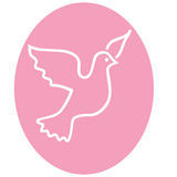 Flying dove. White flying dove on pink oval background Stock Photography