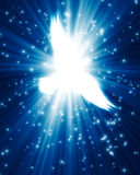 Flying dove against glowing background. With stars Stock Images