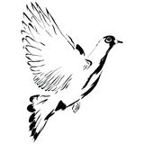 Flying dove cartoon Royalty Free Stock Images