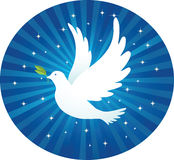Flying dove with leaf. Illustration of Flying dove with leaf and blue background Royalty Free Stock Photography