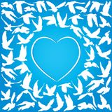 Flying dove for peace concept and wedding design. White heart on a blue background. Vector illustration Royalty Free Stock Image