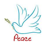 Flying dove of peace with green twig Stock Photo