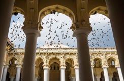 Flying doves at the palace of Madurai, India. Flying doves at the palace of Madurai seen trough pillars, India Royalty Free Stock Image
