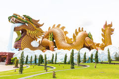 Flying Dragon. Mascot of the Chinese people Stock Images
