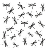 Flying dragonflies. Hand drawn illustration pattern of flying dragonflies Stock Image