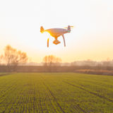 Flying drone above fields at sunset Stock Photo