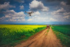 Flying drone over the rapeseed field and tractor. At spring sunny day stock image