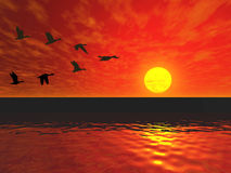 Flying ducks. Sunset and birds. 3D render sunset scene royalty free illustration