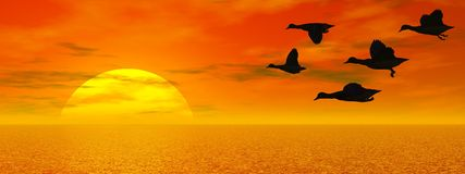 Flying ducks - 3D render Stock Images