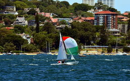 Flying-Dutchman-Weltmeisterschaft 2015, Sydney Stockfoto