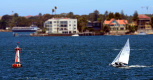 Flying Dutchman World Championship 2015, Sydney Stock Image