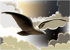 Flying eagle. Vector illustration of flying eagle stock illustration