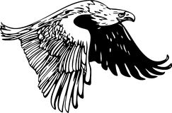 Flying Eagle 2. Vector Illustration of a Flying Eagle Royalty Free Stock Photography