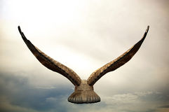Flying Eagle. Concept of flying eagle heading into sunset Royalty Free Stock Photos