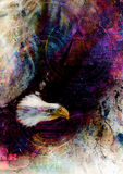 Flying eagle beautiful painting illustration, with one dollar collage. texture background. Royalty Free Stock Photos