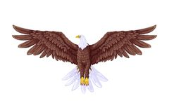 Flying Eagle. Easy to edit vector illustration of flying eagle vector illustration