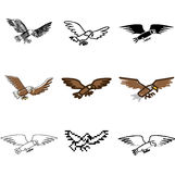Flying eagle icons set Royalty Free Stock Images