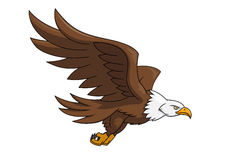 Flying eagle illustration 3. Illustration of the flying eagle on white background stock illustration
