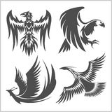 Flying eagle, peacock and pheasant vector logo icons showing different wing positions. Flying eagle, peacock and pheasant vector logo for heraldic or tattoo vector illustration
