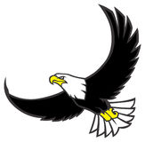 Flying eagle. Vector of Flying eagle show the big of his wings royalty free illustration