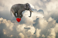 Flying Elephant, Red Balloon, Clouds. An elephant is flying through the clouds and sky on a red balloon. Abstract concept for risk management, goals, business stock illustration