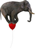 Flying Elephant Red Balloon Isolated. An elephant flying on a red balloon. Isolated on white with PNG file available Royalty Free Stock Photos