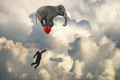 Flying Elephant, Sales, Goals, Marketing Stock Image