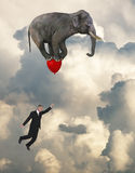Flying Elephant, Sales, Goals, Marketing Stock Photography