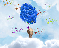 Flying elephant Royalty Free Stock Photo