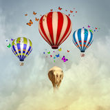 Flying elephant Royalty Free Stock Photos