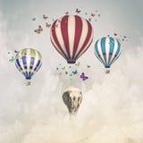 Flying elephant stock photo