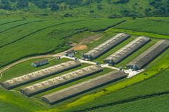 Flying Farmlands Fields Chicken Pens Stock Images
