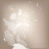Flying feathers. Abstract background with flying feathers royalty free illustration