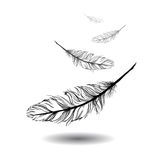 Flying feathers with white background. EPS 10 Royalty Free Stock Photography
