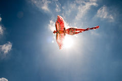 Flying the Firebird Royalty Free Stock Images