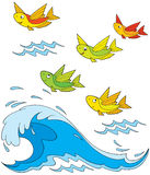 Flying fish royalty free stock image