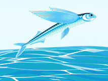 Flying fish Royalty Free Stock Photo