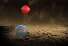 Flying Fish, Determination, Goals, Challenges. Abstract concept of a flying fish in a fishbowl through a desolate desert. Metaphor for goals, challenges, success Royalty Free Stock Photos